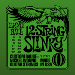 Ernie Ball 2230 12-string Slinky Nickel Wound Set, 8-40