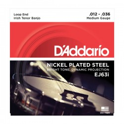 D'Addario EJ63i Irish Tenor Banjo, Nickel, 12-36
